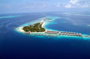 Отель Coco Palm Bodu Hithi на Мальдивах (24 фото)